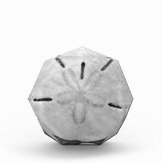 Black and White Sand Dollar Acrylic Award