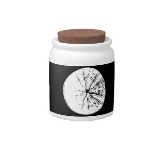 Black and white sand dollar candy dish