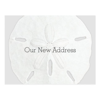 Black and White Sand Dollar Coastal New Address Postcard