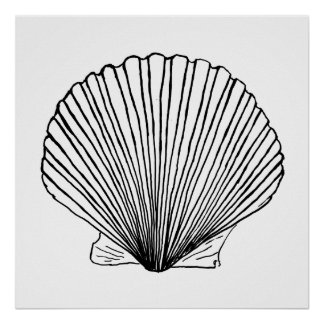 Black and White Scallop Shell Poster