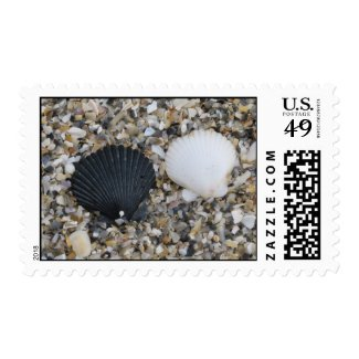 Black and White Sea Shells Postage Stamp