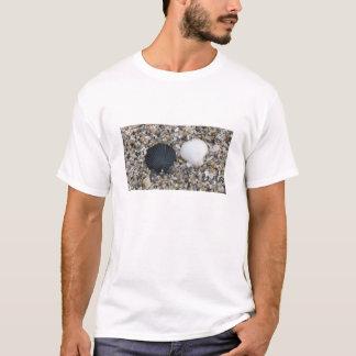 Black and White Sea Shells T-Shirt