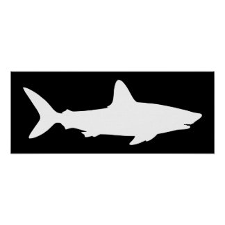 Black and White Shark Poster
