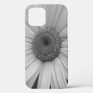 Black and White Shasta Daisy Close Up iPhone 12 Case