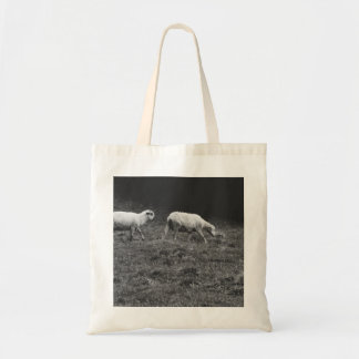 Black and White Sheep In A Pasture Photo Tote Bags