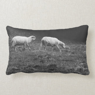 Black and White Sheep In A Pasture Photo Lumbar Pillow