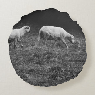 Black and White Sheep In A Pasture Photo Round Pillow