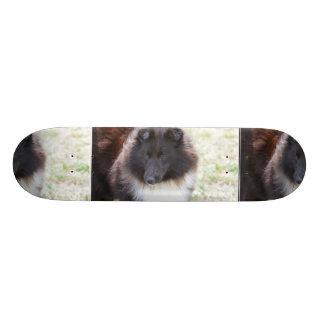 Black and White Sheltie Skateboard
