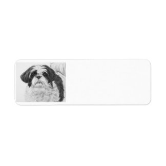 Black and White Shih Tzu Art Return Address Label