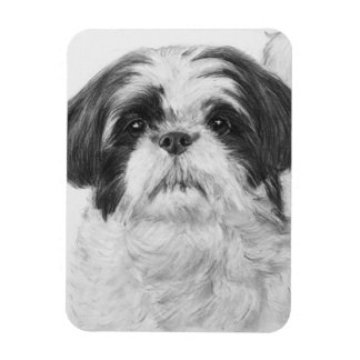 Black and White Shih Tzu Art Magnet