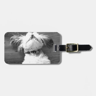 Black and White Shih-Tzu Puppy Travel Bag Tag
