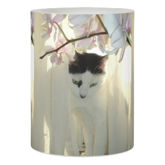Black and White Short Hair Flameless Candle