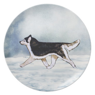Black and White Siberian Husky Plate Blue Eyes
