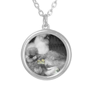 Black and White Silkie Chickens with yellow Chicks Silver Plated Necklace