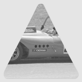 Black and white single seater race car triangle sticker