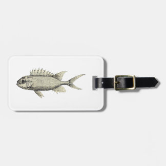 Black and White Sketchy Fish Illustration Tag For Bags