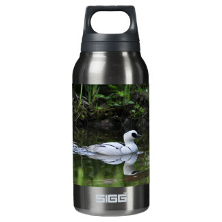 Black and White Smew or Sea Diving Duck Waterfowl Insulated Water Bottle