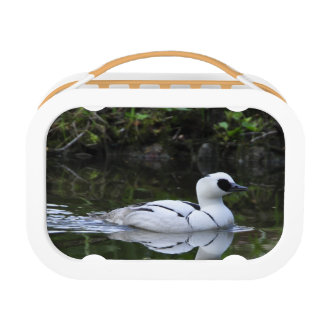 Black and White Smew or Sea Diving Duck Waterfowl Lunch Box