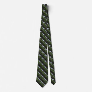 Black and White Smew or Sea Diving Duck Waterfowl Neck Tie