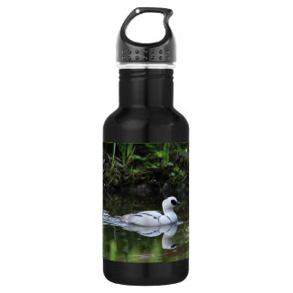 Black and White Smew or Sea Diving Duck Waterfowl Water Bottle