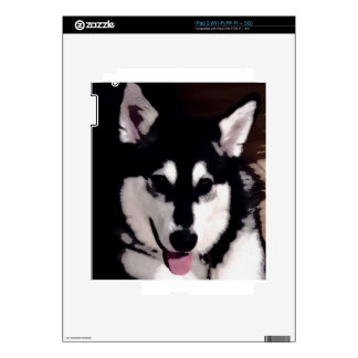 Black and white smiling Alaskan Malamute Decals For The iPad 2