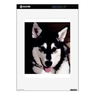 Black and white smiling Alaskan Malamute Skin For The iPad