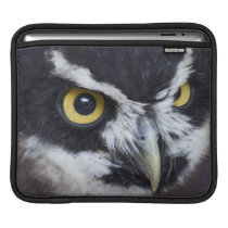 Black and White Specacled Owl Sleeve For iPads