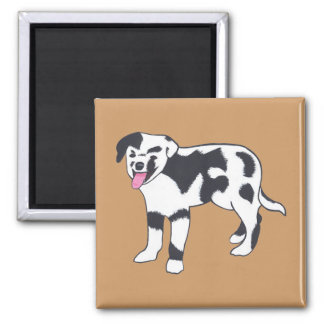 Black and White Spotted Dog Magnets
