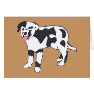 Black and White Spotted Dog Note Cards