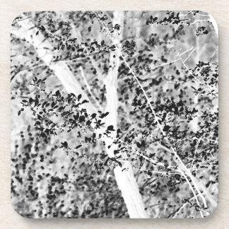 Black and White Spring Foliage Coaster Set