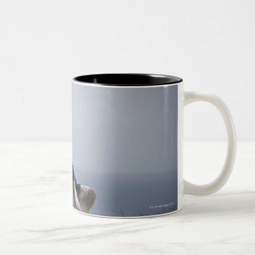 black and white Springer Spaniel playing with Two-Tone Coffee Mug