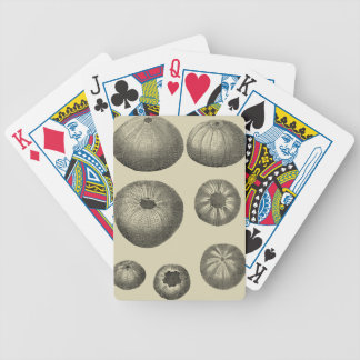 Black and White Starfish Bicycle Playing Cards