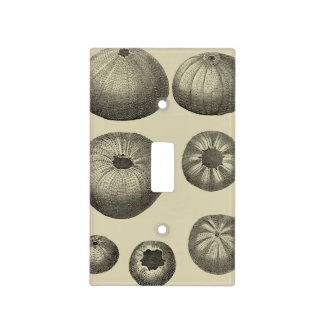 Black and White Starfish Light Switch Cover