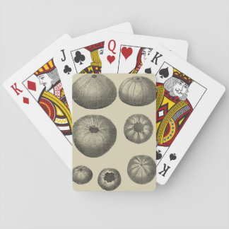 Black and White Starfish Playing Cards