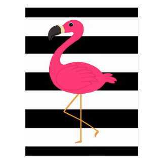 Black and White Stripe Pink Flamingo Postcard
