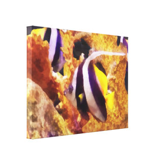 Black and White Striped Angelfish Canvas Print