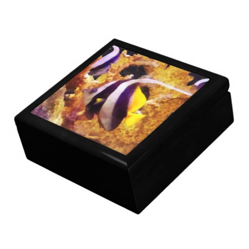 Black and White Striped Angelfish Trinket Boxes
