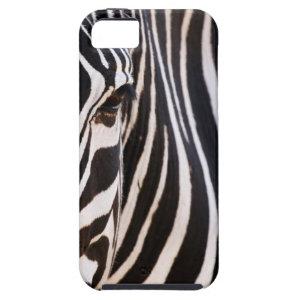 Black White Striped Zebra iPhone Case