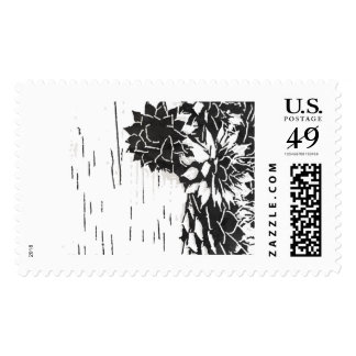 Black and White Succulent Stamp