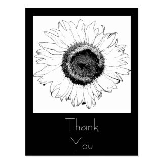 Black and White Sunflower Thank You Postcard