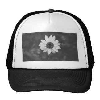 Black and white sunflower trucker hat