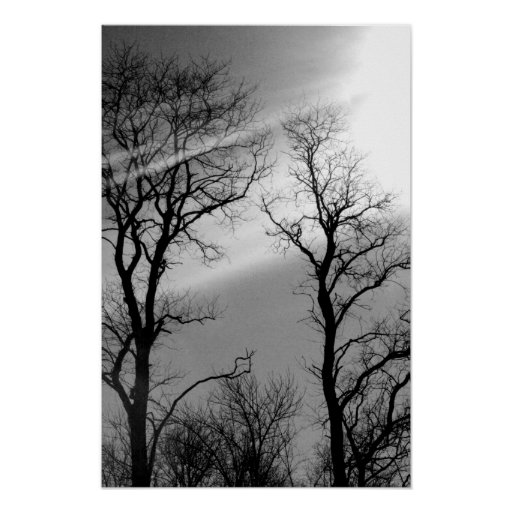 black and white sunshades poster