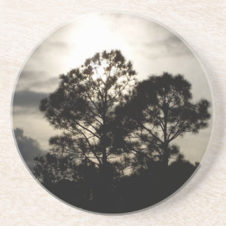 Black and white surreal photograph of pine trees coaster