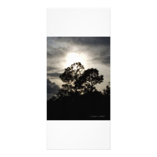 Black and white surreal photograph of pine trees personalized rack card