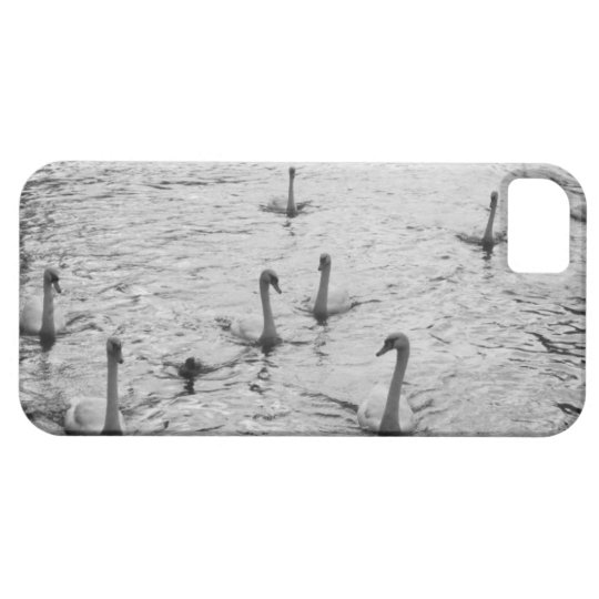 Black and white swans iPhone SE/5/5s case