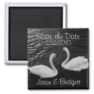 Black and White Swans Save the Date magnet