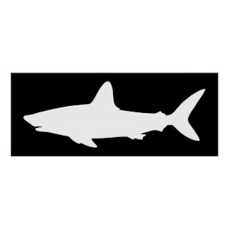 Black and White Swimming Shark Poster