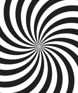 Black And White Swirl Posters Photo Prints Zazzle