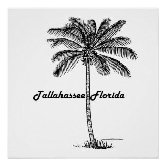 Black and White Tallahassee & Palm design Poster