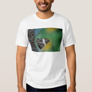 Black and White Tiger Butterfly Shirt